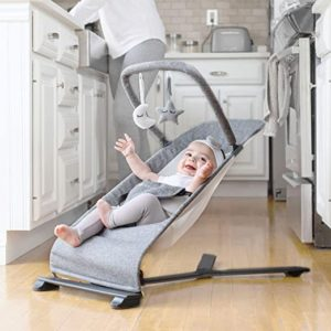 Baby Delight Go with Me Portable Bouncer